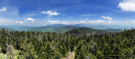 panoarama looking north from the summit of Clingmans Dome the highest point in Tennessee Stock Photo - 24171949
