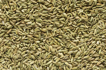 fennel seed: fennel seed spice macro background texture image Stock Photo