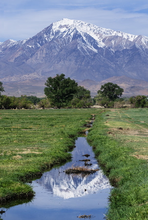 reflection of Mount Tom in an irrigation ditch in the Owens Valley of California