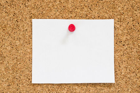 pin board: blank white paper notice posted on cork board with red push pin Stock Photo