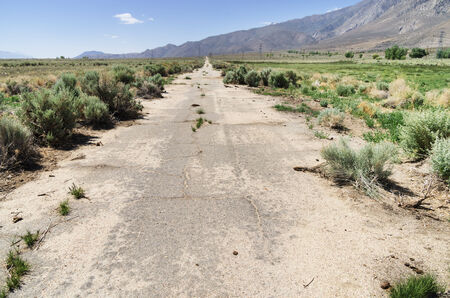 deteriorating: old abandoned paved road slowly being reclaimed by nature Stock Photo