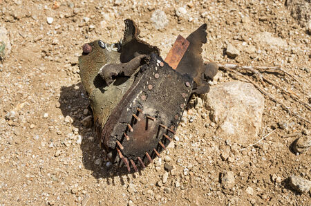 the remains of an old shoe left out in the desert