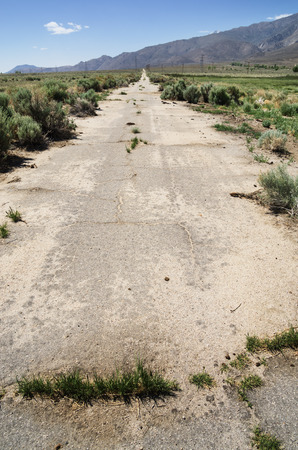deteriorating: vertical image of old abandoned paved road