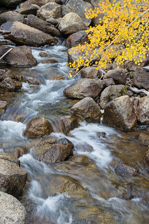 mountain stream in the fall with yellow aspen leaves and blurred water