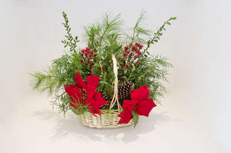Christmas basket arrangement with poinsettia and evergreen greenery with light background