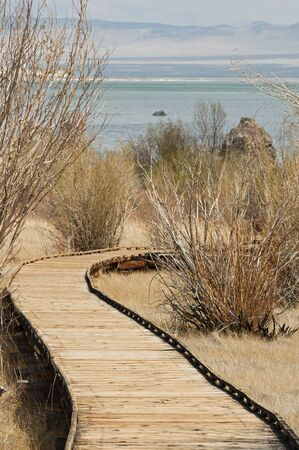 boardwalk trail: boardwalk trail towards the shore of Mono Lake Stock Photo
