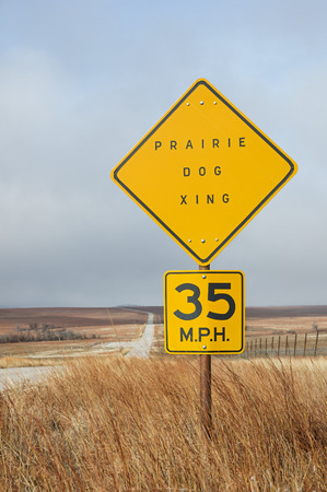 xing: vertical image of prairie dog crossing sign by the side of the road