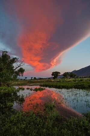 lenticular cloud: Sierra wave cloud sunset reflected in a flooded field