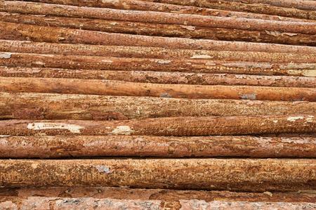 een stapel boomstamlogboeken als onderdeel van een houtbewerking