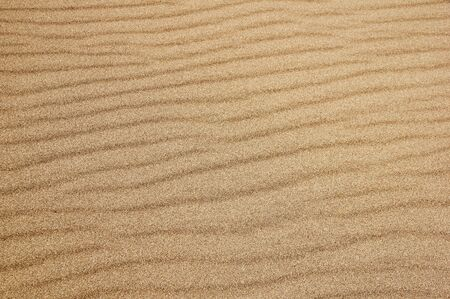 detail of rippled sand surface at great sand dunes national park
