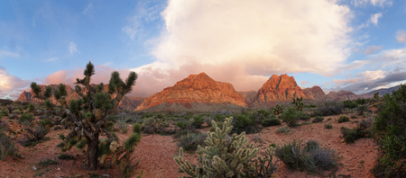 early morning light illuminates the mountains at Red Rock National Conservation Area near Las Vegas Stock Photo