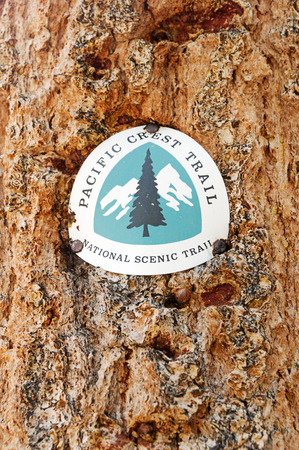Pacific Crest Trail or PCT marker nailed to a tree trunk