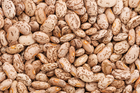 dry uncooked pinto beans close up background image