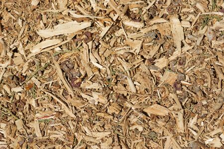 organic mulch background with wood chips bark and leaves