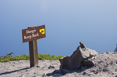 a chipmunk looking at a danger keep back sign at a Crater Lake overlook