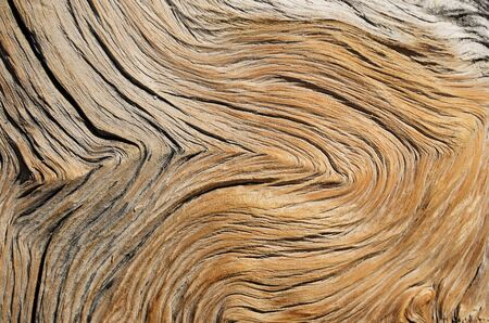 weathered and contorted wood grain background texture Banco de Imagens