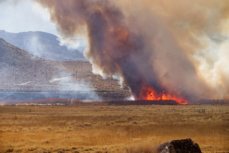 Wildfire in the Owens Valley near Pleasant Valley Campground