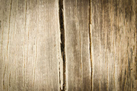 Old wood cracked texture