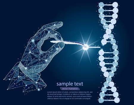抽象的なデザイン。手、ピンセットを用いたDNA二重らせんの操作。白い背景の低いポリワイヤフレームから隔離される。ベクター抽象ポリゴンイメージマッシュラインとポイント。