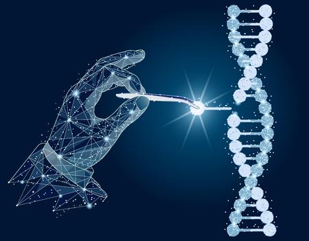 Diseño abstracto. Manipulación de ADN de doble hélice con manos, pinzas. aislado de estructura metálica de baja poli sobre fondo blanco. Línea y punto de puré de imagen poligonal abstracta.