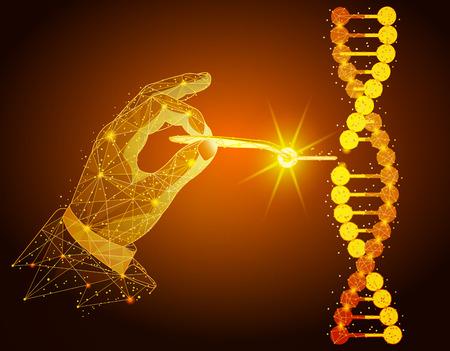 Low poly illustration of the Manipulation of DNA double helix with with hands, tweezers