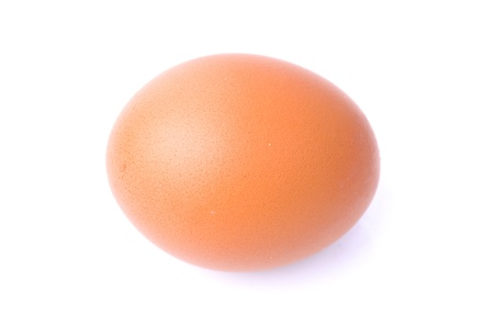 close up of egg on white background with clipping path Stock Photo - 13681188