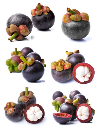 Mangosteen collection
