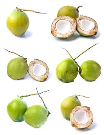 noix de coco: Collecte de noix de coco Banque d'images