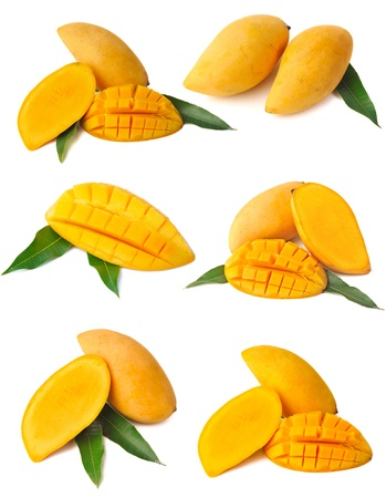 mango fruta: Colecci�n de Mango