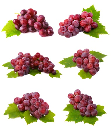 Red grapes collection photo