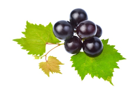 Black grape with leaf isolated on white background photo