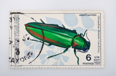 philatelic: THAILAND - CIRCA 1989  A stamp printed in Thailand shows beetles , circa 1989 Stock Photo