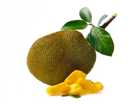Jackfruit isolated on white background photo