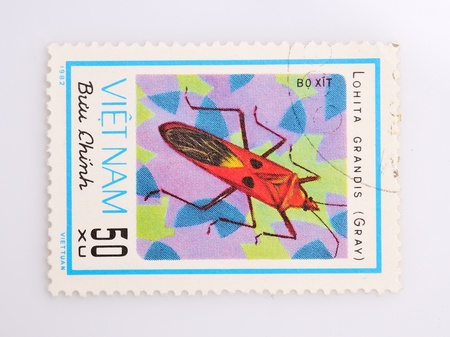 philately: VIETNAM - CIRCA 1989  A stamp printed in Vietnam shows the beetles, circa 1989 Stock Photo