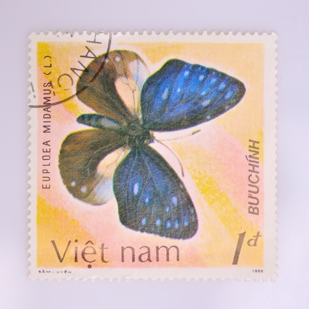 VIETNAM - CIRCA 1986  A stamp printed in Vietnam shows the butterfly, circa 1986 photo