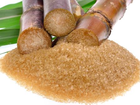 sugarcane: Sugar cane isolated on white background Stock Photo