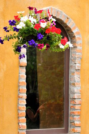 wall ivy: Detalle ventana con la pared de la hiedra Foto de archivo