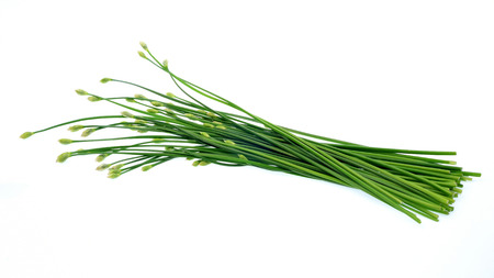 Garlic chives or Ku Chai isolated on white background