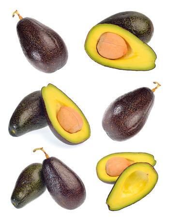 Avocado fruit collection photo