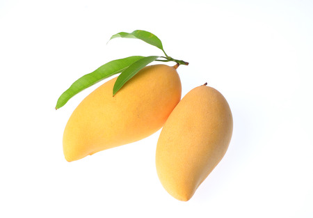 mango: Yellow mango isolated on white background Zdjęcie Seryjne
