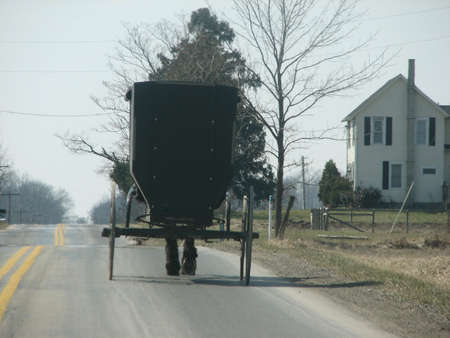 Amish buggy traveling down road photo