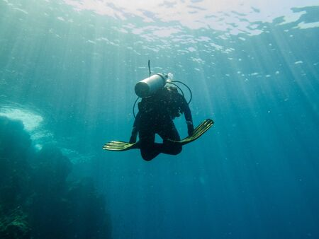 the diver is diving in the sea, Philippines