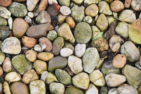 closed up the varity colour pebbles on a ground Stock Photo