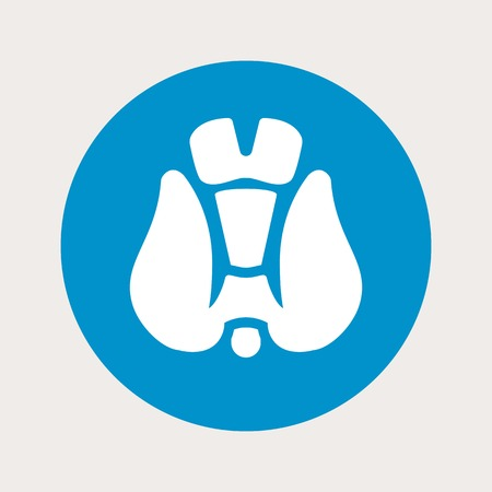 thyroid: vector illustration of modern b lue icon thyroid