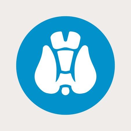 vector illustration of modern b lue icon thyroid