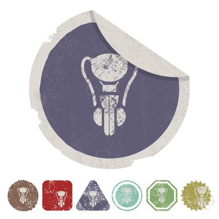 testiculos: ilustraci�n vectorial de la moderna b falta de �rganos icono masculino