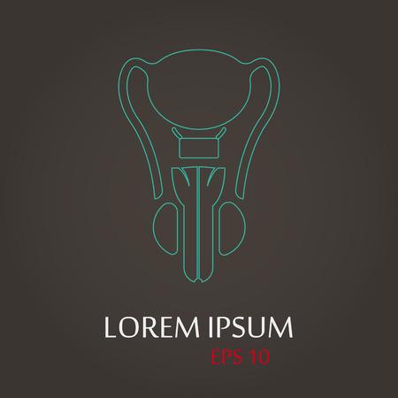 seminal vesicle: vector illustration of modern b lack icon male organ