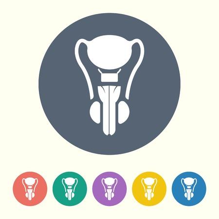scrotum: ilustraci�n vectorial de la moderna icono negro �rgano masculino Vectores