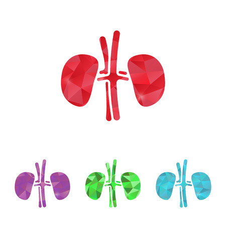 vitals: illustration of modern b lack icon kidneys