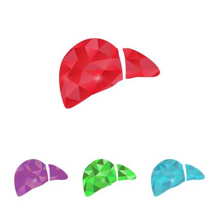 liver: illustration of modern b lack icon liver
